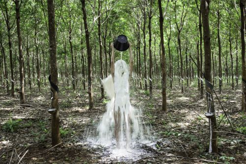 Khvay Samnang, Rubber Man, 2014, Digital C-Print, 80 x 120 cm Edition of 3 & 1AP, 120 x 180 cm Edition of 4 & 1AP (1)